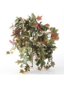 Unknown arrangement  fan shaped flowers