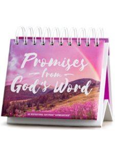 DaySpring desk pad calendar