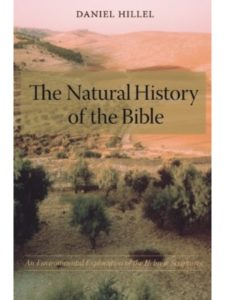 Columbia University Press daniel  bible histories