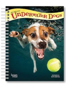 BrownTrout Publishers dog engagement calendar