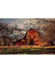 Southern Plains Photography profile picture