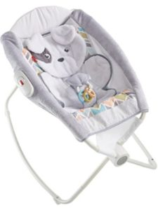 Fisher-Price rock n play  infant inserts