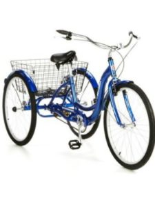 Schwinn tricycle  child carriers