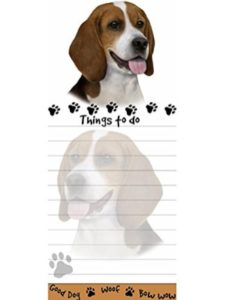 E&S Pets watermark  office words