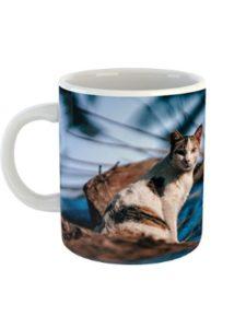 Westlake Art    cat profile pictures