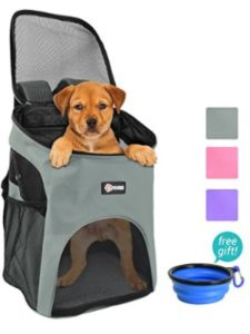 Pawsee dachshund  backpack carriers
