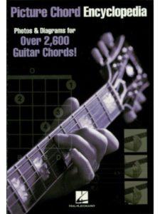 Hal Leonard encyclopedia  guitar techniques