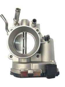 biosp fuel injection  throttle body cleanings