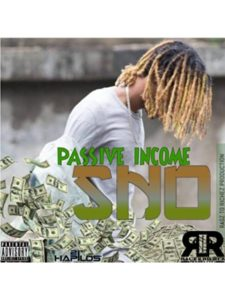 Ragz To Riches Production llc  passive incomes