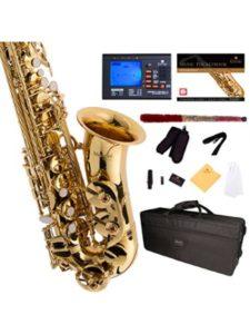 Cecilio Musical Instruments los angeles  guitar schools