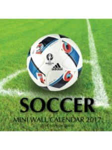 CreateSpace Independent Publishing Platform    mini wall calendar 2017S