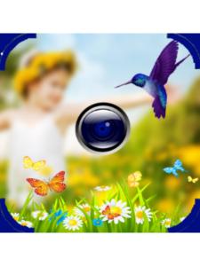 Damidoo Team mirror  camera effects
