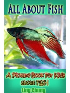 Twilight Publishing photicular book