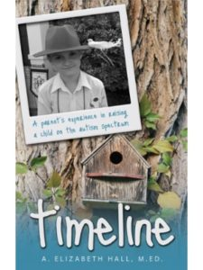 amazon special education  timelines