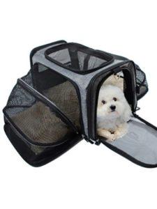 Odie Tom yorkie  backpack carriers